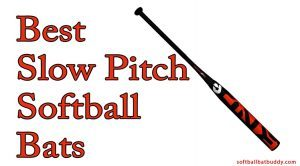 The Top 7 Best Slow Pitch Softball Bats to Buy For the Next Season